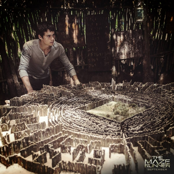 An aerial view of the maze in The Maze Runner